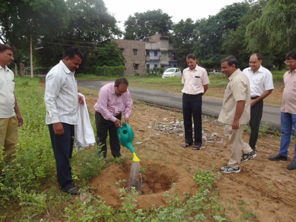 Massive plantation in leadership of director at CSWRI farm Avikanagar at different locations on dated 5.09.2014 on the eve of teacher day
