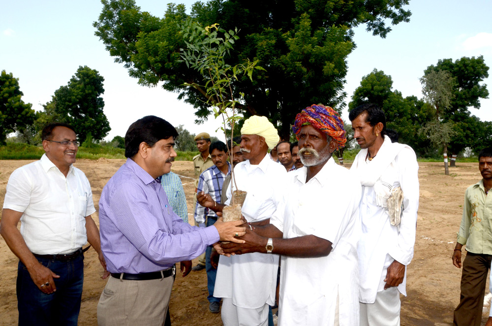 Tree sapling distribution to farmers